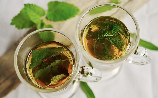 čaje z čerstvých bylin