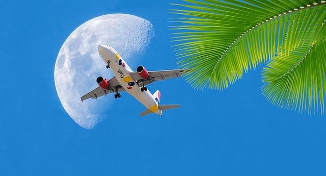 letadlo, měsíc a palma